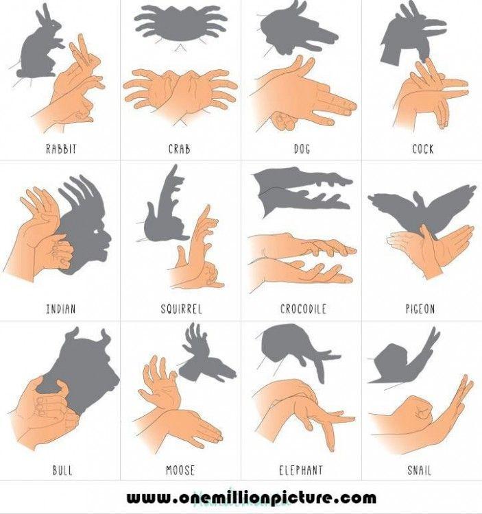 Sombras con las manos