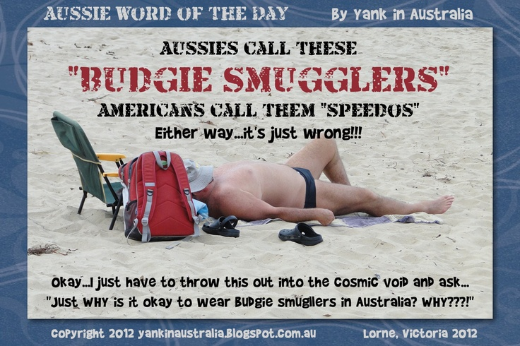 """AUSSIE WORD OF THE DAY:  Aussies call these """"BUDGIE SMUGGLERS"""". Americans call them """"Speedos"""". Either way, they're just wrong! #yankinaustralia #australia"""