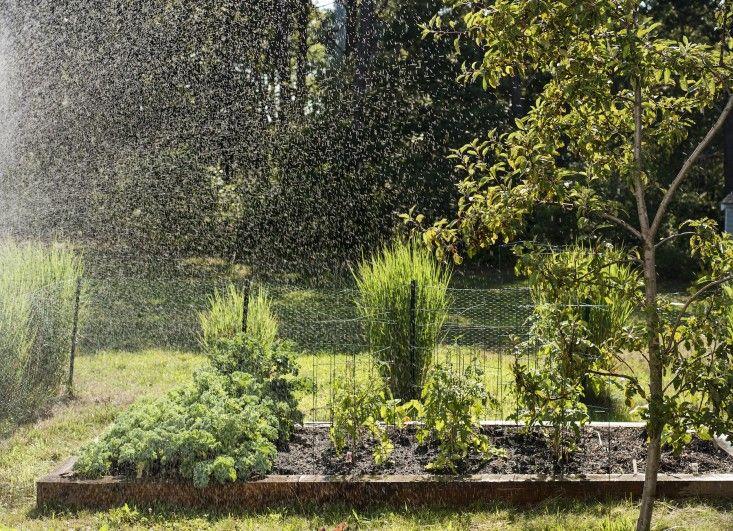 Sheila Bonnell Orleans Cape Cod Kitchen Garden ; Gardenista