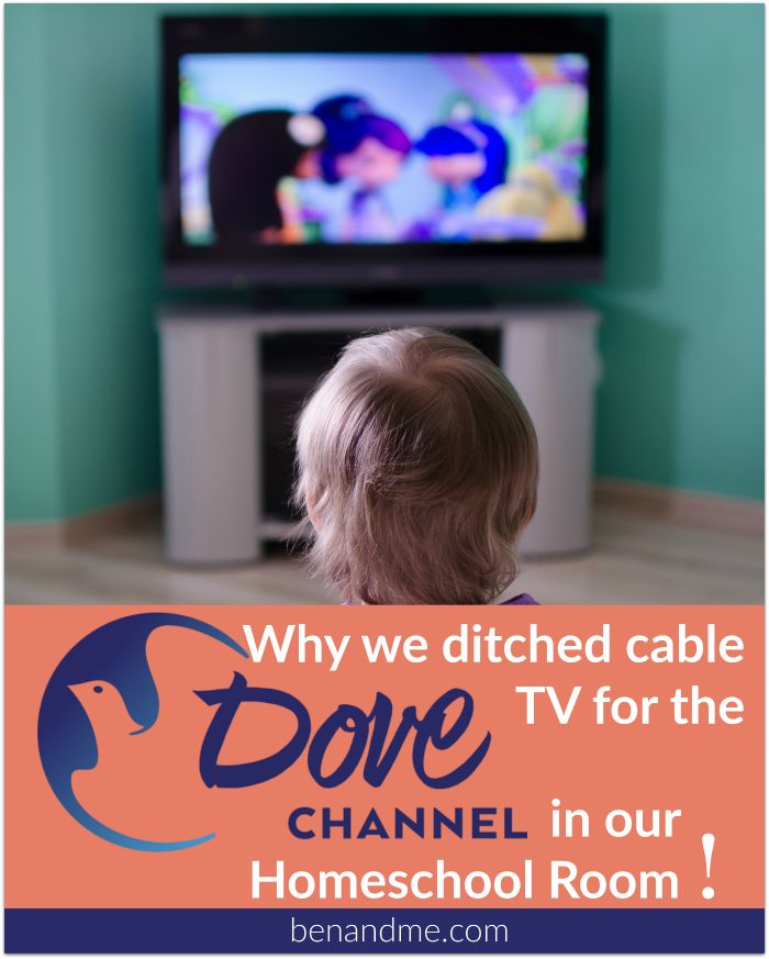 I was introduced to the Dove Channel and finally, we can stream movies and TV shows that I don't have to worry so much about.