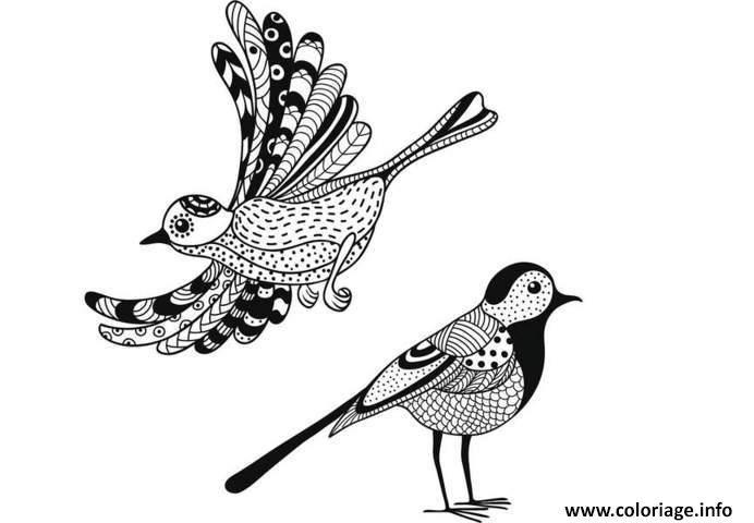 Coloriage Anti Stress Animaux Oiseaux A Imprimer Oiseau
