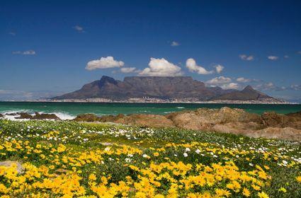 Table Mountain Cape Town   Images et photos de Le Cap: photo cape town table mountain