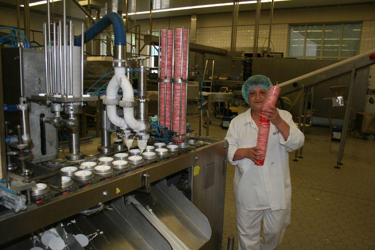 Ijs fabriek
