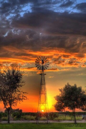 Sunset at Engelmann Cellars... awesome sun setting behind the windmill