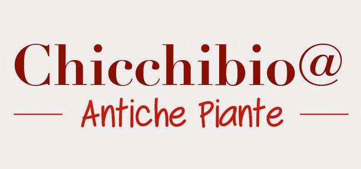 chicchibio@antiche piante: chichibio@antiche piante 2015