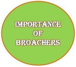 It is very essential to have a company broaches in order to represent your business features and characteristics to develop and complete. http://vikcan.wordpress.com/2013/09/02/why-are-brochures-essential-for-sales-and-marketing/