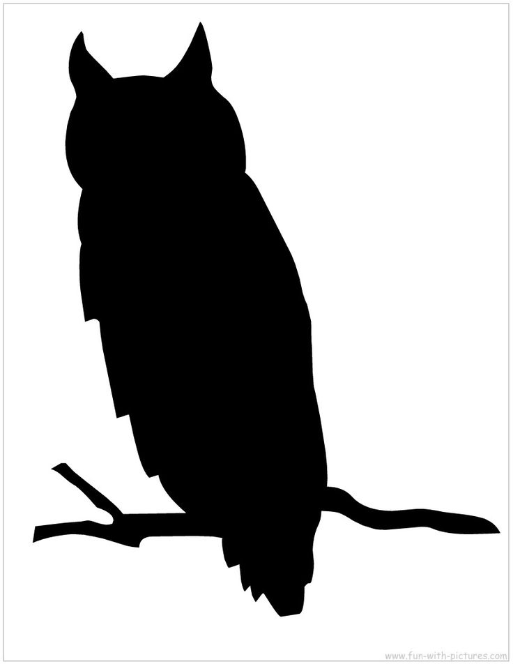 Silhouette Picture - Owl Silhouette. DIY cut out for front door or porch Halloween decor.  Hang or sit on branches.