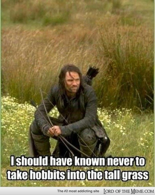 so aargon how did you loose frodo again? ... orcs wasn't it? - Lord of the Meme