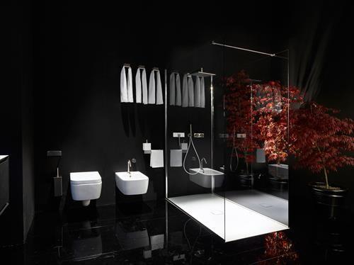 Black Bathrooms Ideas