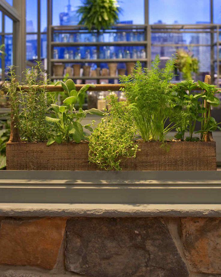 Kitchen Bench Herb Garden: 25+ Best Ideas About Large Garden Planters On Pinterest