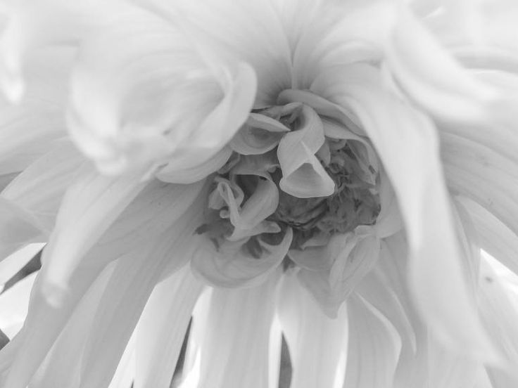 "Saatchi Art Artist johann kruger; Photography, ""Unfolding"" #art"