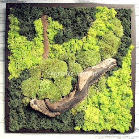 les 25 meilleures id es de la cat gorie tableau vegetal sur pinterest fleurs stabilis es art. Black Bedroom Furniture Sets. Home Design Ideas