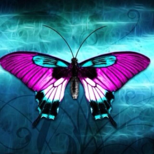 Beautiful Chang E 3: Those A Pretty Buterfly
