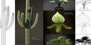 Google Image Result for http://www.goochvision.com/images_slideshow/plant_models.jpg