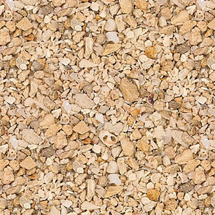 """Amazon.com : Safe & Non-Toxic (Various Size, 0.08"""" to 0.22"""" Inch) 40 Pound Bag of Gravel, Sand & Pebbles Decor Made of Crushed Coral for Freshwater & Saltwater Aquarium w/ Florida Beach Style [Tan & Light Brown] : Pet Supplies"""