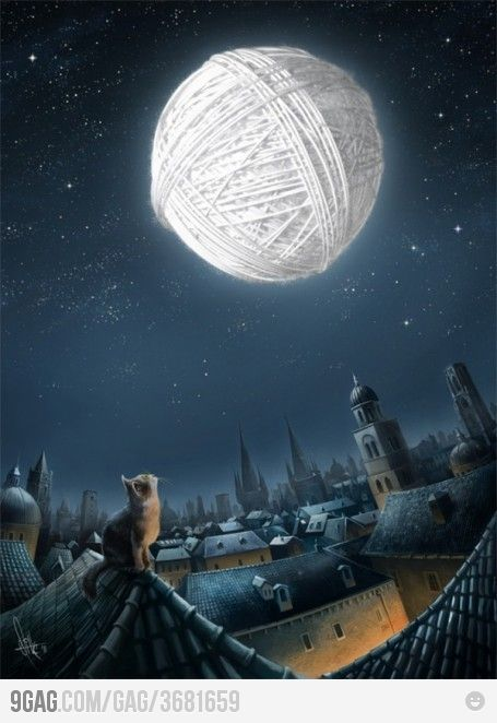 A cat's dream.: Sky, Dreams Big, Cat Eye, Moon, Yarns, Kittens, Blue Moon, Kitty, The Moon