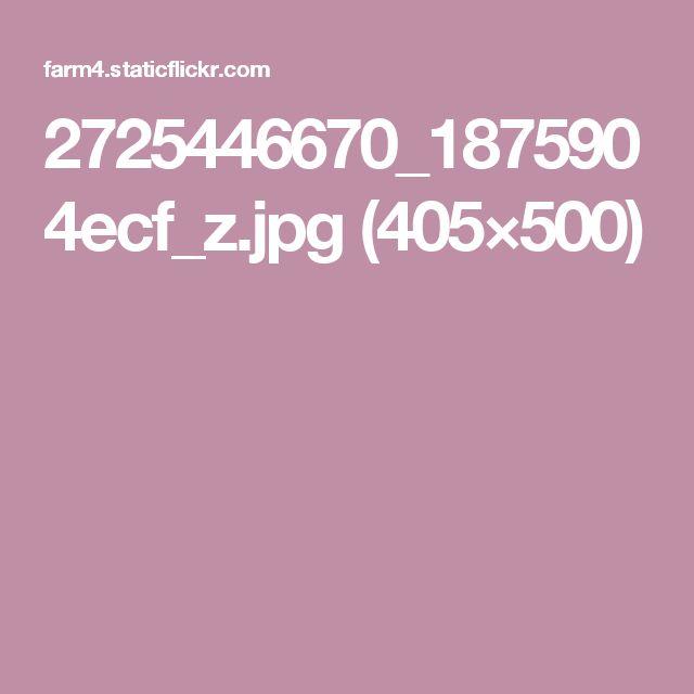 2725446670_1875904ecf_z.jpg (405×500)