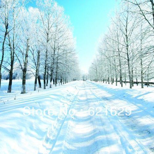 Красивая снега 10'x10 'ср Компьютерная роспись Scenic Фотография Фон Фотостудия Фон ДТ-11-238