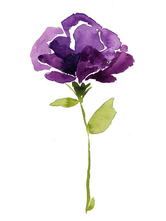 Wine cup poppy - watercolor painting, botanical art, minimalist, flower painting, purple poppy, watercolor flower, a flower a day, art print