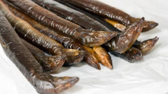 Witlof-roomsoep met gerookte paling. Recept van Silvia Witteman uit de Volkskrant.