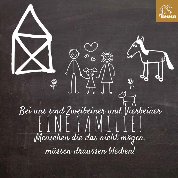 Pferdesprüche & Pferdezubehör-emma-pferdefuttershop.de(21)