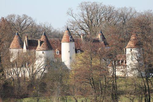 Arthon Castle - Indre dept., Centre région, France              ..........châteauroux-tourism.fr