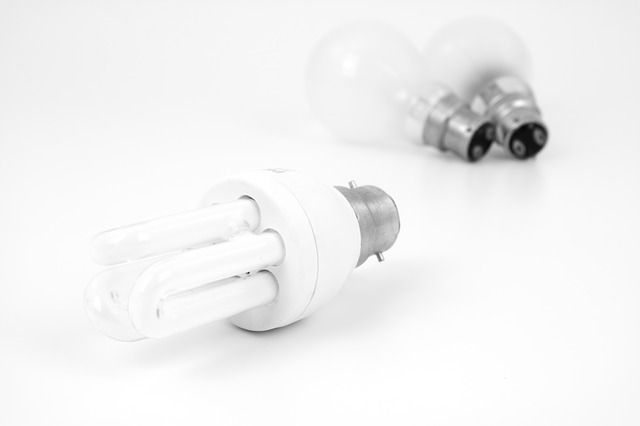 Licht ins Dunkel: Energiesparlampen, Teil 1. Bei jedem von uns hängen oder stehen sie in verschiedensten...
