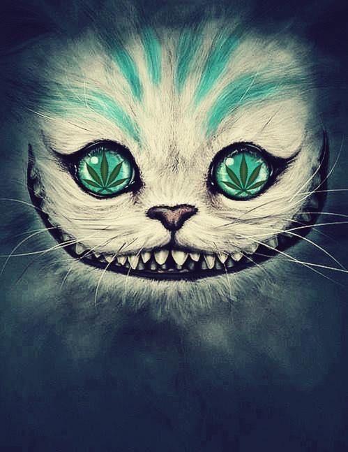 Who doesn't love Alice in Wonderland? #weed #cheshirecat #marijuana #wonderland
