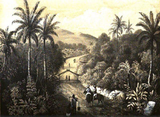 Jelajah Sejarah Manado: Kisah Lain Gempa 1845