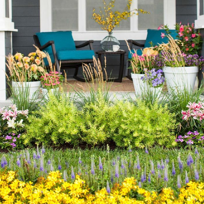 Admire The Beauty Of A Small Yard That Packs A Big Punch. Low Care