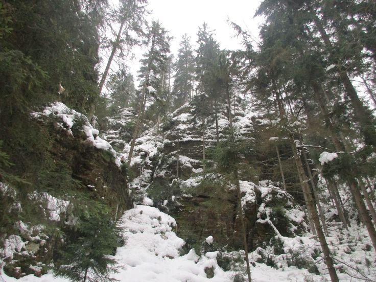 Kyjovské skály - severní Čechy