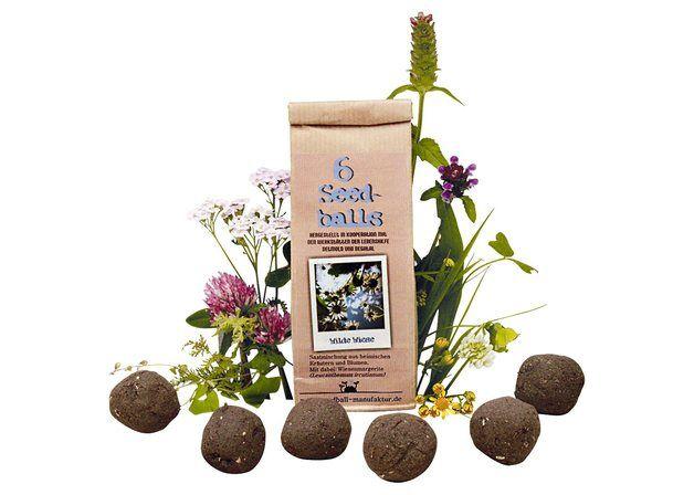 Seedballs Wilde Wiese 6er Pack