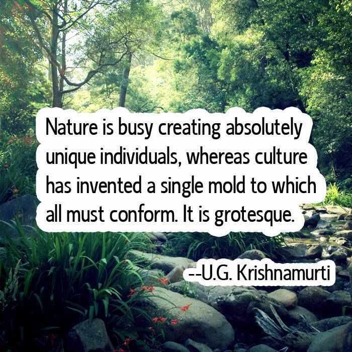 Nature is busy creating absolutely unique individuals, whereas culture has invented a single mold to which all must conform. It is grotesque. --U.G. Krishnamurti
