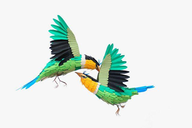 New Paper Birds and Wildlife by Diana Beltran Herrera