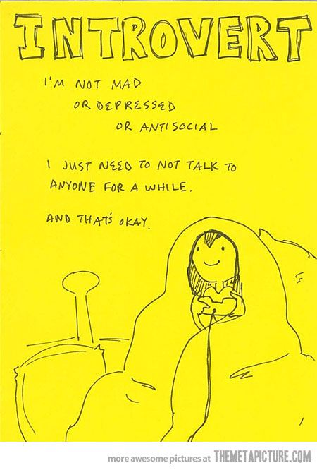 introvert: Like A Boss, Be An Introvert, Videos Games, Quote, Alone Time, Quiet Time, The Games, So True, True Stories