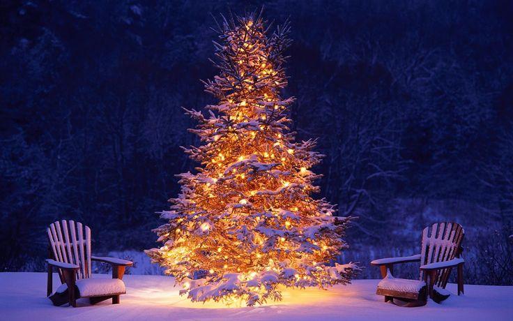 Mooi brandende kerstboom in de sneeuw.