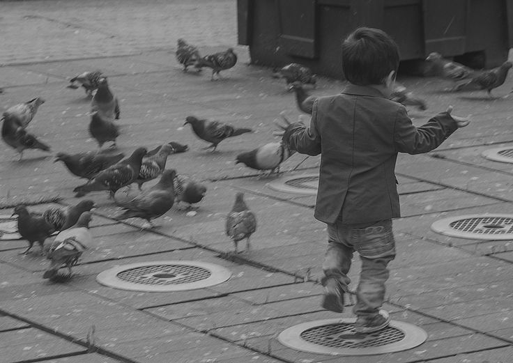 Boy and pigeons by Jakub Hajost on 500px