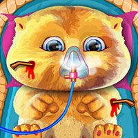 Talking Ginger Care– Best Free Game on Gamefree.co
