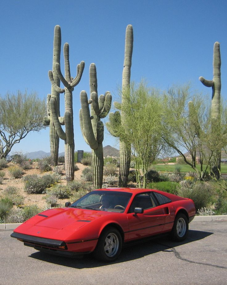 Pontiac Fiero Mera- Only a few hundred of these were custom made. Increasingly more rare Ferrari look alike that represents what the Fiero could have been, but never became due to mechanical issues and design flaws.