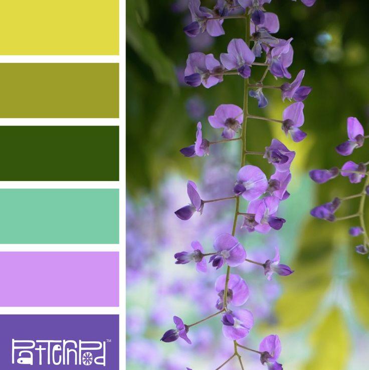 Lush Lavender #color #colorpalettes
