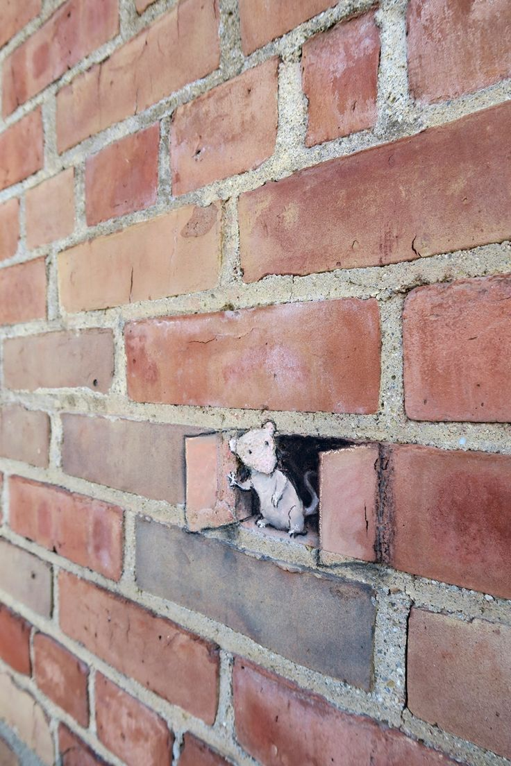 Source: @davidzinn Pawlet cautiously embraces Airing-Out Day.