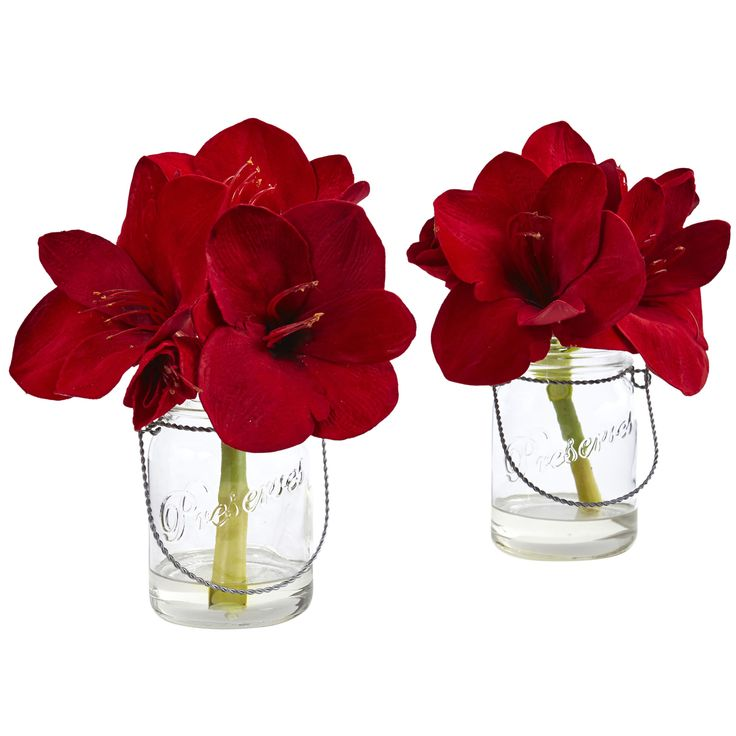 Bring holiday cheer to the coffee table or hallway display with faux Amaryllis blooms that are bursting with color. Pillowing over a clear, glass Jar, add a hint of country by pairing with seasonal textiles, shimmering lights and other onramental objects. Made with handcrafted materials for a delicate, life-like appearance.