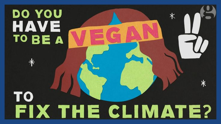 Do you have to be a vegan to help fix climate change? | Keep it in the g...