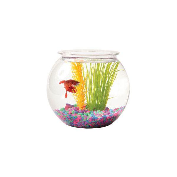 Hanging Glass Vase Fish Tank Transparent Spherical Fishbowl White