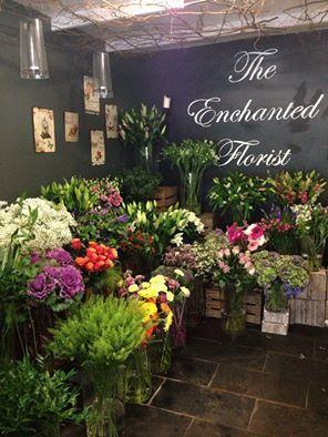 168 best :: FLOWER SHOP :: images on Pinterest | Plants ...