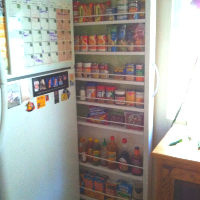 Small kitchen storage solutions buffalo apartment for Small kitchen solutions