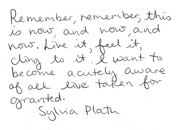 I have a paper to write on Sylvia Plath's, Ariel, any advice?
