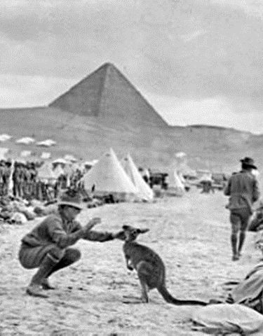 Australian troops in Egypt. December 1914.
