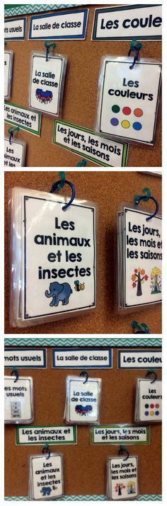 This large comprehensive package includes the portable summary vocabulary cards, individual vocabulary cards, title cards and blank cards for 5 word wall sets: - Les mots usuels - Les couleurs - La salle de classe - Les animaux et les insectes - Les jours, les mois et les saisons