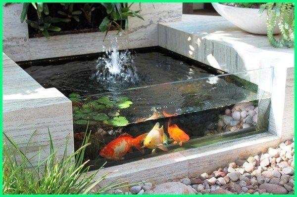 Inspirasi Kolam Ikan Hias Sederhana Dengan Tanaman Air Kolam